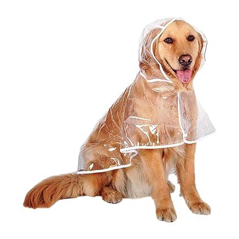 Xinvision Impermeable con Capucha Perro - Mascota Ropa ...