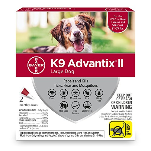 Heartworm And Flea Prevention For Dogs
