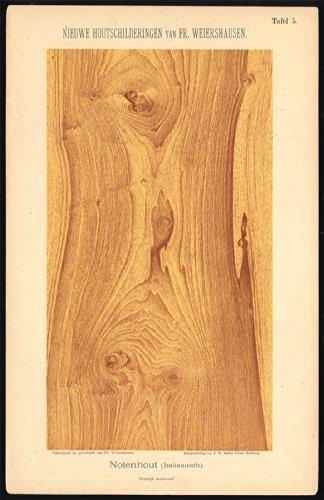 (Antique Print-WOOD WORKING-GRAIN-ITALIAN WALNUT-PLATE 5-Weiershausen-1902)