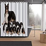 ALUONI Female Border Collie Shower Curtains Set with Hooks,3 Years Old for Shower,59''W x 71''H 6