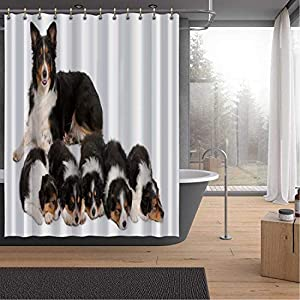 ALUONI Female Border Collie Shower Curtains Set with Hooks,3 Years Old for Shower,59''W x 71''H 5