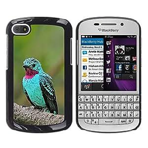 Mint Green Bird tropical púrpura pluma- Metal de aluminio y de plástico duro Caja del teléfono - Negro - BlackBerry Q10