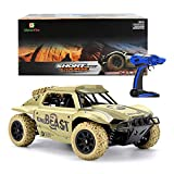 GizmoVine Remote Control Car 1/18 Scale 4WD High Speed Vehicle 15.5MPH 2.4Ghz Radio Control Off Road RTR Racing Monster Truck Beast Short Course (yellow)