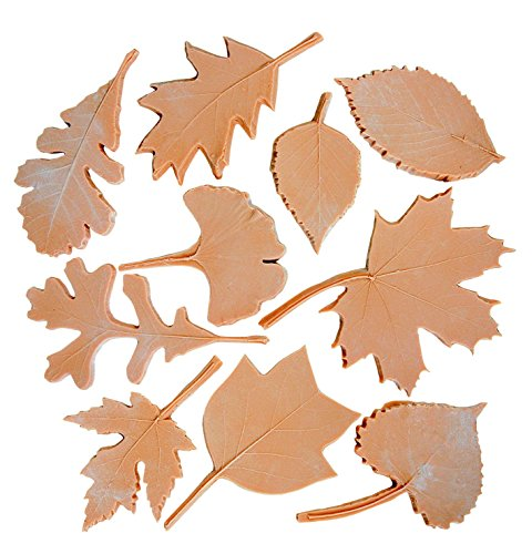 Sax Leaf Prints, Assorted Sizes, Brown, Set of 10