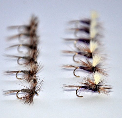 Fly Assortment - 8