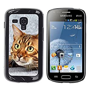 YiPhone /// Prima de resorte delgada de la cubierta del caso de Shell Armor - Bengal Cat House Kitten Feline Pet - Samsung Galaxy S Duos S7562