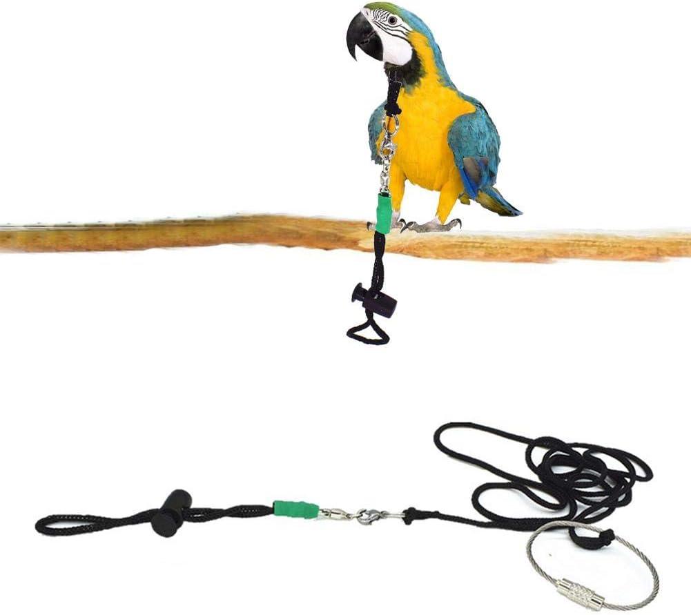 Corwar Arnés para pájaros, Cuerda de Entrenamiento Anti- mordida ...