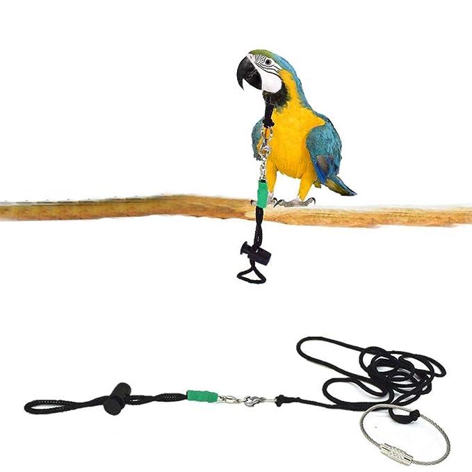Sue-Supply Pet Bird Arnés Y Correa Loro Seguro Leash Pet Harness ...