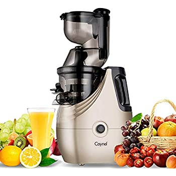 Caynel Whole Slow Masticating Cold Press Juicer Extractor Quiet Durable Motor, 3