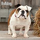 Turner Licensing Photographic Bulldogs 2018 Wall Calendar  (18998940009)