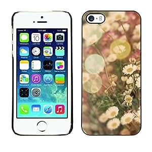 Summer Sun Vignette campo flor de la margarita - Metal de aluminio y de plástico duro Caja del teléfono - Negro - iPhone 5 / 5S