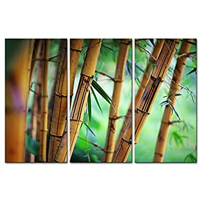 3 Pieces Modern Canvas Painting Wall Art The Picture For Home Decoration Forest Background Zen Pattern Bamboo Landscape Print On Canvas Giclee Artwork For Wall Decor