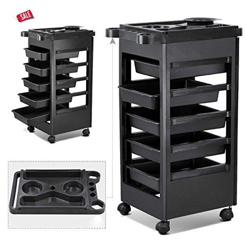 Beauty Furniture (Salon Trolley Storage Cart Coloring Beauty Hair Dryer Holder Stylist Equipment -Skroutz)