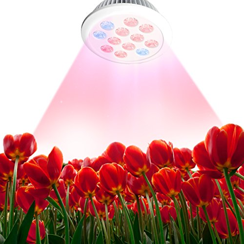 LED Grow Light Bulb, Angozo Grow Plant Light for Garden Greenhouse and Hydroponic Full Spectrum Grow LED Lamps ( E27 12w 3 Bands)