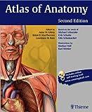 Image de Atlas of Anatomy (Thieme Anatomy)