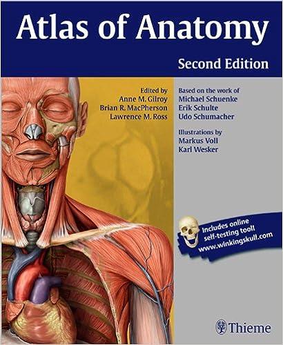 Ebook download atlas of anatomy thieme