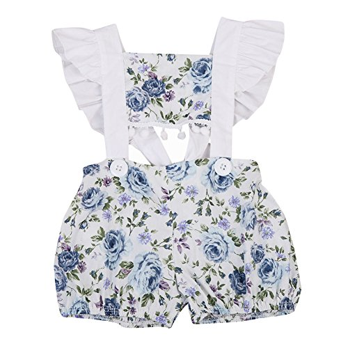 Baring Back Dress (Newborn Baby Girls 1-Piece Midriff-baring Tassel Blue Flower Romper Jumpsuit Outfit Clothes (0-3M, Blue flower))