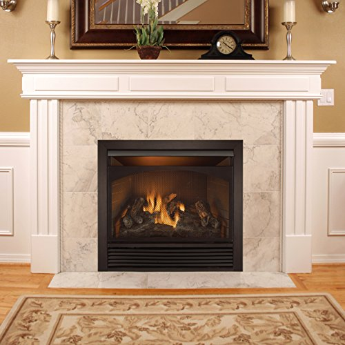 Duluth Forge Dual Fuel Vent Free Fireplace Insert 32 000