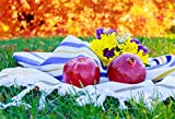 CSFOTO 7x5ft Background for Red Apple Pomegranate on Tablecloth Grass Rosh Hashanah Photography Backdrop Jewish Holiday Honey Culture Jewish Religious Year Photo Studio Props Polyester Wallpaper