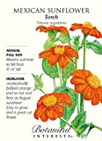 Mexican Sunflower Torch Seeds - 500 mg - Annual