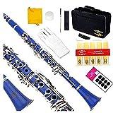 Glory Blue/Silver keys B Flat Clarinet with