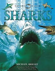 Sharks (Nature Watch)