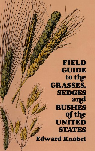 - Field Guide to the Grasses, Sedges, and Rushes of the United States