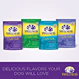 Wellness Complete Health Natural Dry Dog