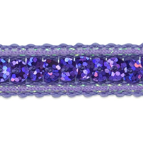 20-Yard Silver Expo International Single Row Sequin with Sparkle Edge Trim