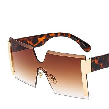 YLNJYJ Gafas De Sol Gafas De SolGafas Cuadradas Gafas De Sol ...