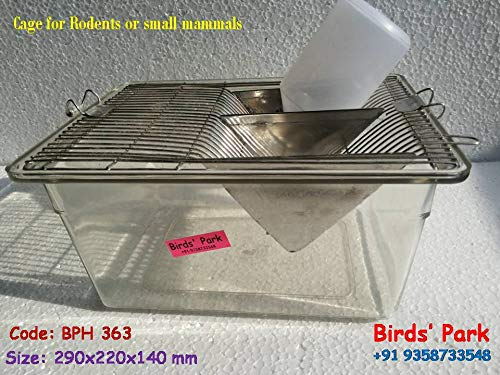 Lab Animal Cage Transparent Polycarbonate for Rat Mice & Hamster