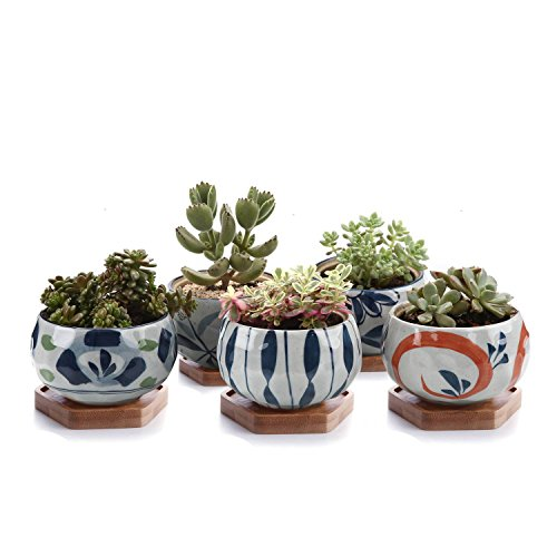 T4U Japanese Style 4.25 Ceramic Bowl Shape Succulent Plant Pot with Bamboo Tray - Collection of 5