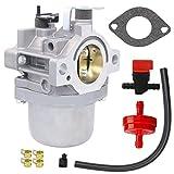 HOOAI LMT 5-4993 Walbro Carburetor for Briggs & Stratton 799728 498027 499161 498231 494502 494392 495706 498134 496592 699318 699737 699856 699896-28V707 Carburetor