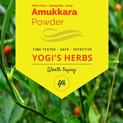 Yogis Herbs Amukkara Powder - Aswagandha Root Powder 1lb - Fresh & Pure (Best Herbs For Sleeplessness)