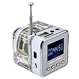 Docooler Mini Digital Portable Music MP3/4 Player Micro SD/TF USB Disk Speaker FM Radio Silver