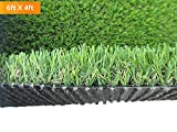 PZG Commerical Artificial Grass Patch w/ Drainage Holes & Rubber Backing   Extra-Heavy & Durable Turf   Lead-Free Fake Grass for Dogs or Outdoor Decor   Total Wt. - 83 oz & Face Wt. 55 oz   12' x 10'