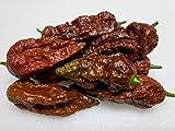 Chocolate Bhutlah Hot Pepper 10+ Seeds