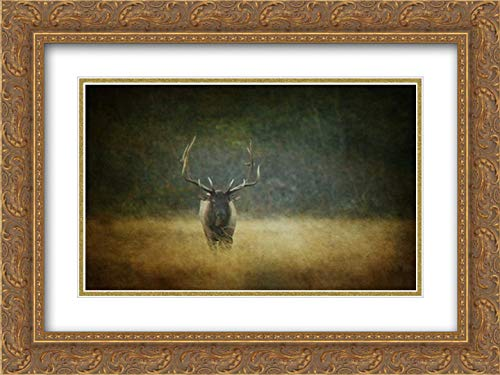 Six Point Bull 18x13 Gold Ornate Frame and Double Matted Art Print by Murray, Roberta