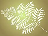 "wall painting ideas Fern Stencil - (size 3""w x 4""h) Reusable Wall Stencils for Painting - Best Quality Wall Art Décor Ideas - Use on Walls, Floors, Fabrics, Glass, Wood, Terracotta, and More…"