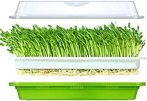 Plant Germination Tray Seed Sprouter Tray with Lid BPA Free Bean Sprout Grower Germination Kit Sprouting Kit Extra Small Hole Sprouting Grower Kit and Storage Trays for Home Kitchen Use