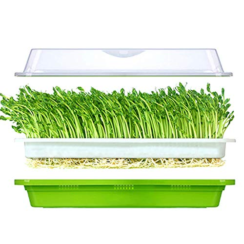 (Seed Sprouter Tray with Lid BPA Free Bean Sprout Grower Germination Kit Extra Small)