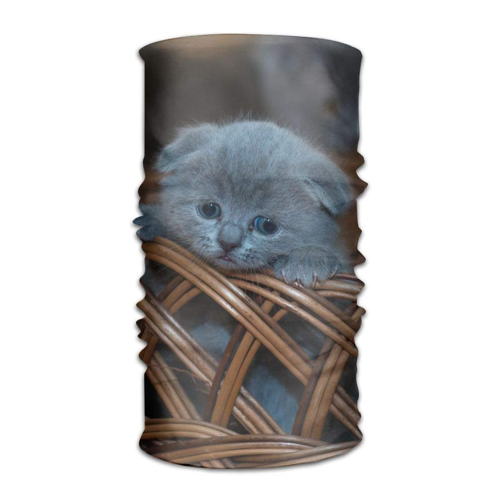 Blue Kitten In A Weaving Basket Unisex Fashion Quick-drying Microfiber Headdress Outdoor Magic Scarf Neck Neck Scarf Hooded Scarf Super Soft Handle