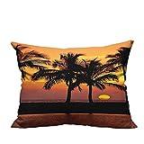 YouXianHome Sofa Waist Cushion Cover Caribbean Horizon Dusk Time Romantic Peaceful Coastal Charm