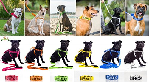 Image of SERVICE DOG Blue 2ft 4ft 6ft Padded Dog Leash PREVENTS Accidents By Warning Others of Your Dog in Advance (4ft)