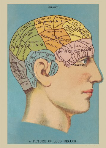Poster of Phrenology Vintage Art Picture of Good Health