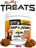 Premium Hip and Joint Chews for Dogs + Skin and Coat Canine Supplement Dog Glucosamine, Chondroitin, MSM, Omega 3 & 6, Healthy Dog Treat Soft Chews for Arthritis and Hip Dysplasia Pain Relief