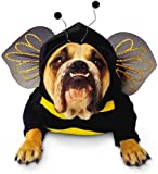 Paper Magic Group Zelda Bumblebee Pet Costume in 3 Sizes