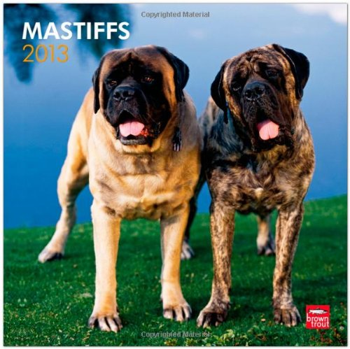 Download Mastiffs 2013 Square 12X12 Wall Calendar (Multilingual Edition) ebook