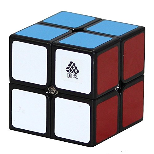 Black WitTwo Type C 2x2x2 Cube Puzzle Oostifun