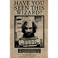 Wizarding World PP33681 Harry Potter (Wanted Sirius Black) Maxi Poster, Bois, Multicolore, 61 x 91,5 cm